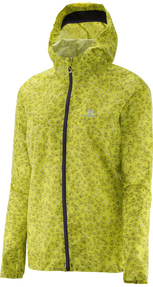 Salomon W's Fast Wing Graphic Hoodie